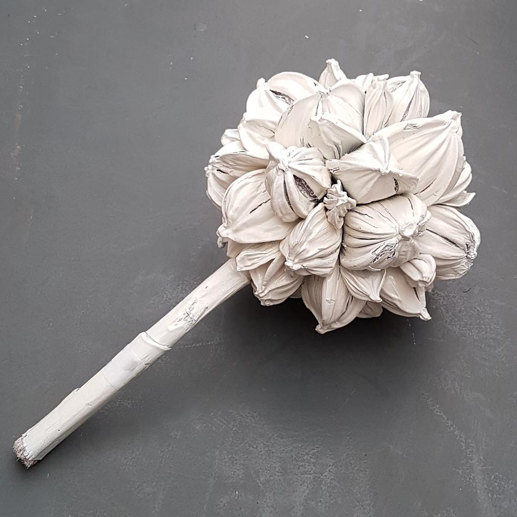 Deco coconut wit 25 cm woonaccessoires decoratie cadeau 39 s en handgemaakte producten - Deco wit ...